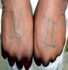 Stop houston gangs for 52 hoover crip tattoos